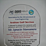 Award Life Service Award from the AACEI