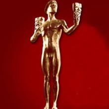 Award Screen Actors Guild Award