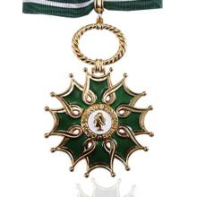 Award Order of Arts and Letters