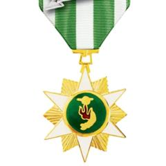 Award Republic of Vietnam Campaign Medal with 1960- device