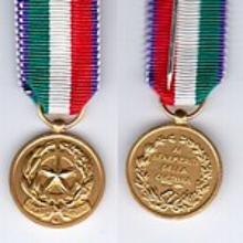 Award Gold Medal to the merit of Culture and Art