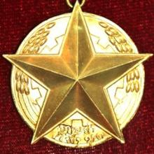 Award Gold Medal of the Nation