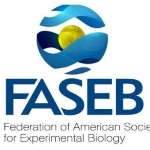 Federation of the American Societies for Experimental Biology