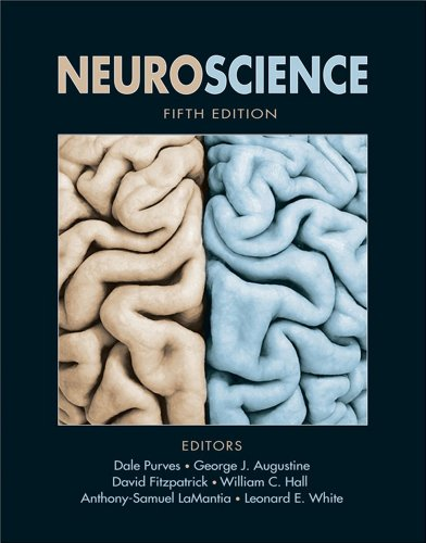 book Neuroscience, Fifth Edition