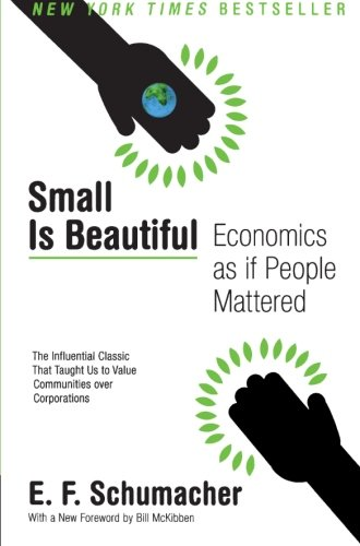 book Small Is Beautiful: Economics as if People Mattered