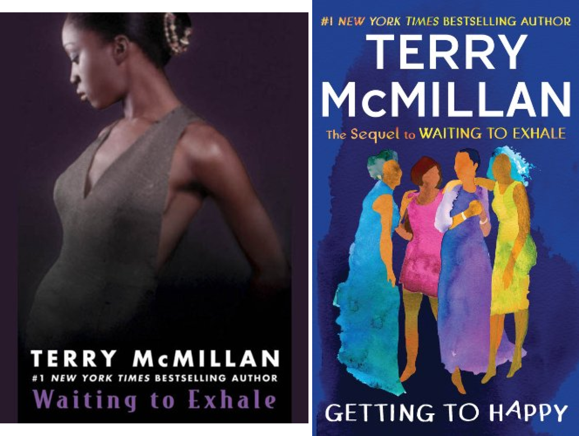 book Waiting to Exhale (2 Book Series)