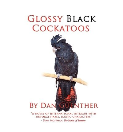 book [ [ [ Glossy Black Cockatoos [ GLOSSY BLACK COCKATOOS ] By Guenther, Dan ( Author )Nov-18-2009 Paperback